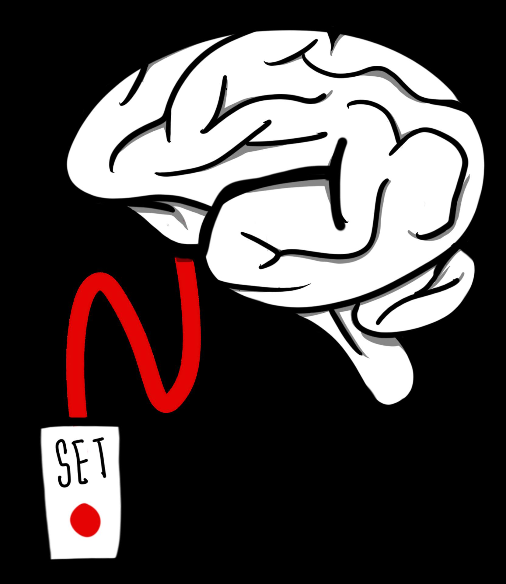 Cerebro conectado a un dispositivo listo para configurar
